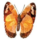 Maitland-Smith Butterfly Sconce